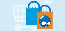 drupal commerce store developer
